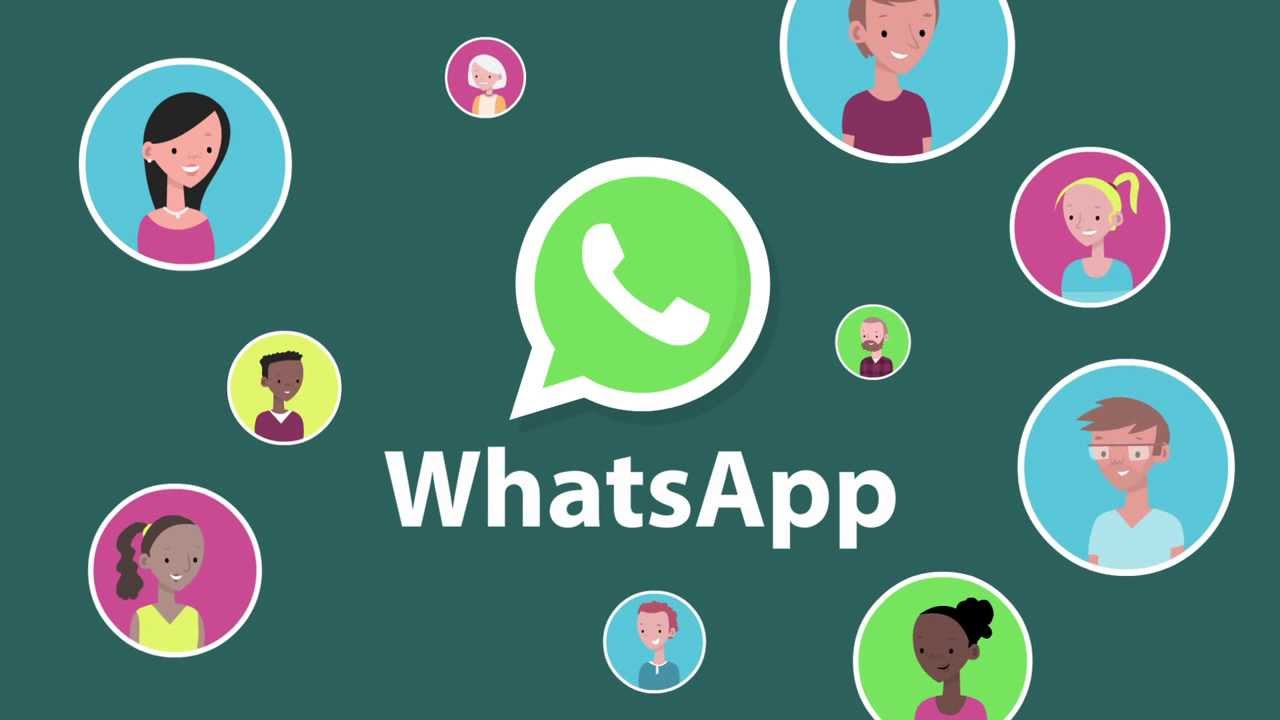 WhatsApp Business API Features that can Amaze you!